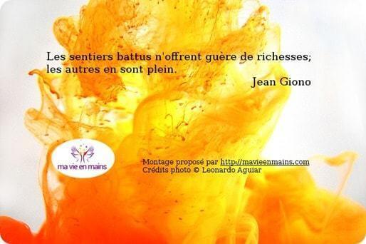 """#citation de Jean Giono : """"Les sentiers battus n'offrent guère de richesses; les autres en sont plein."""" Image : Tâche d'entre jaune"""