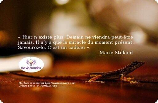 Image citation de Marie Stilkind : Carpe Diem -Savourez l'instant présent