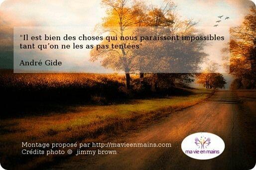 Pour vivre heureux, Il est bien des choses qui nous paraissent difficiles tant qu'on ne les a pas tentées Citation de André Gide
