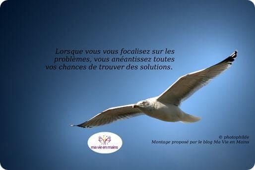 citation confiance en soi © photophilde
