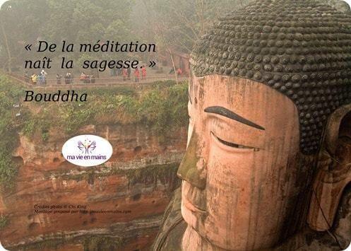 """Citation de bouddha pour ne plus s'ennuyer : """"de la méditation naît la sagesse."""""""