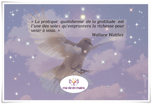 """Citation de Wallace Wattles comment faire pour ne plus s'ennuyer : """"la pratique quotidienne de la gratitude est l'une des voies qu'empruntera la richesse pour venir à vous."""""""