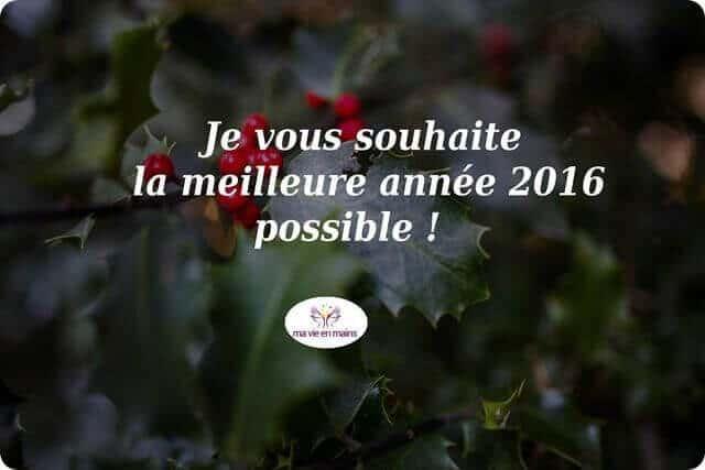 Je vous souhaite la meilleure année 2016 possible !