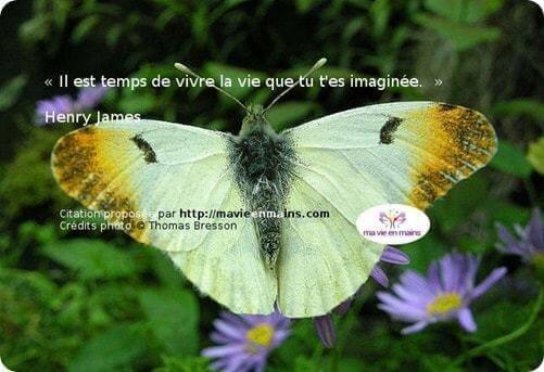 Citation de Henry James : Il est temps de vivre la vie que tu t'es imaginée