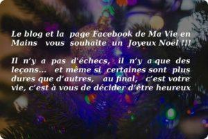Joyeux Noel 2015 !